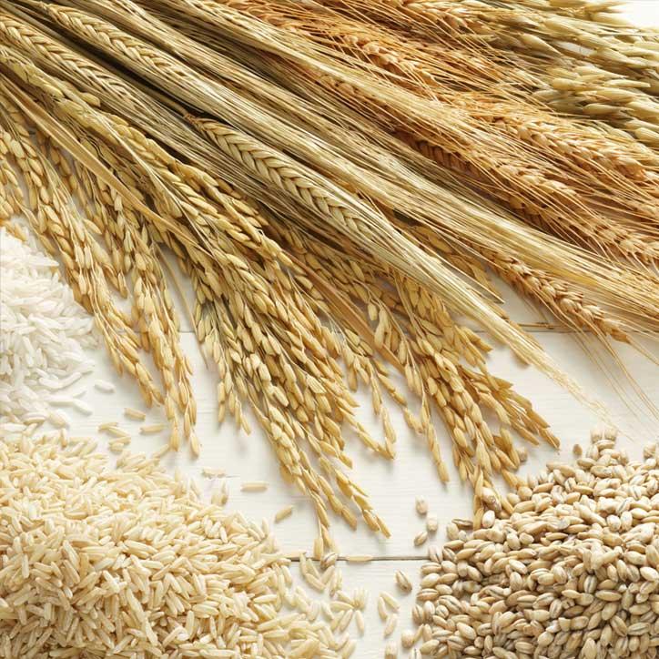 Holding grains